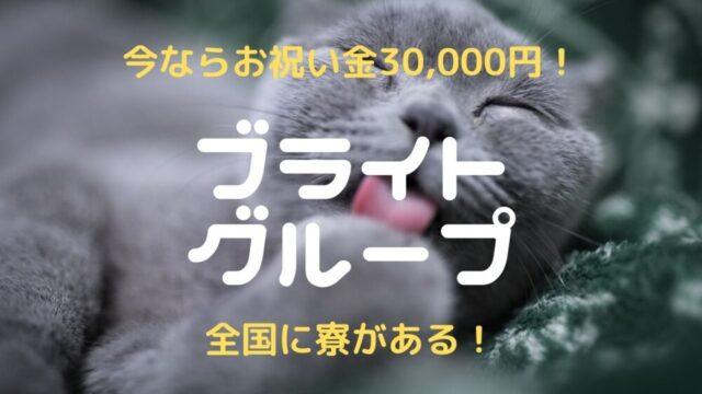 【2021年】ブライトグループ|チャットレディの口コミ・評判を徹底調査!