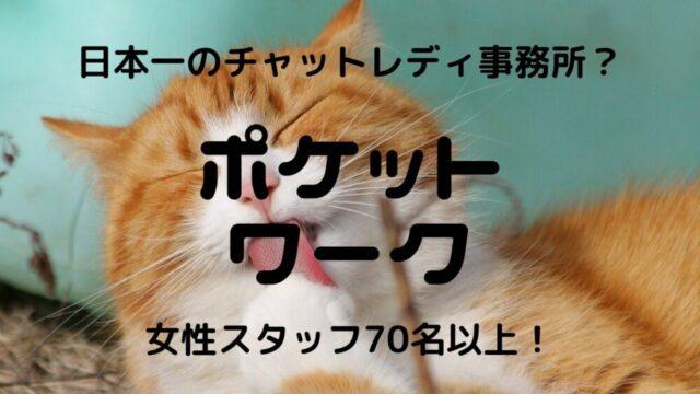 【2021年】ポケットワーク|チャットレディの口コミ・評判を徹底調査!