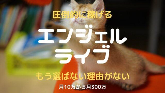 【2021年】エンジェルライブ チャットレディの口コミ・評判を徹底検証!